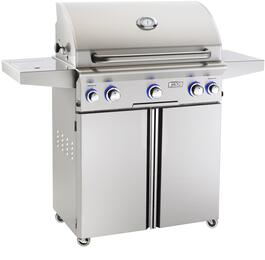 American Outdoor Grill 30PCL00SPR